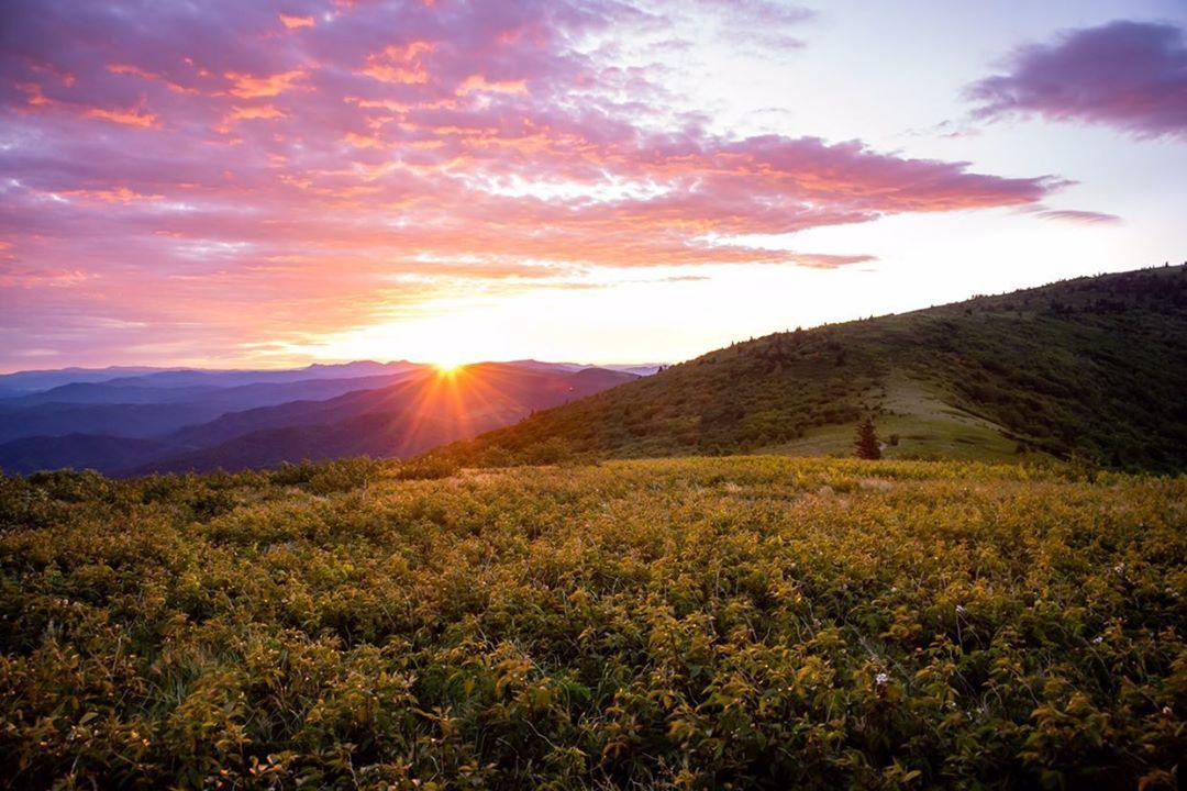 Roan Mountains